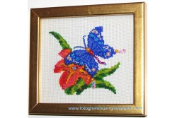 Метелик і квітка