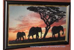 Африканські слони